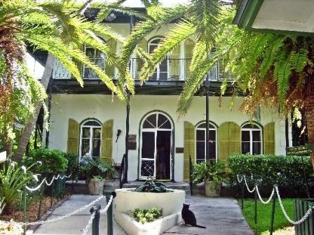 Oltre 60 gatti popolano ancora oggi la casa museo di Hemingway